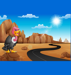 cartoon vulture on rock with empty road in the des vector image