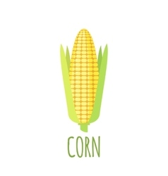 Corn icon in flat style on white background vector image