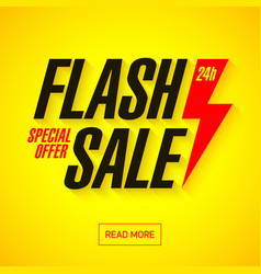 Flash sale banner vector