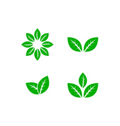 Green leaves set logo template vector