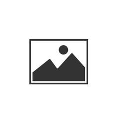 picture icon graphic design template vector image
