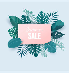 summer sale background with exotic tropical leaves vector image