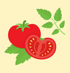 tomato cartoon in flat style vector image