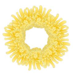 Yellow chrysanthemum flower wreath vector