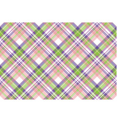 beauty plaid fabric texture seamless pattern vector image