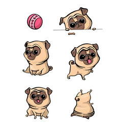Cartoon character pug dog poses cute pet dog in vector