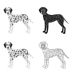 Dalmatian single icon in cartoon styledalmatian vector