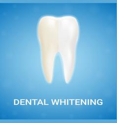 Dental veneer teeth whitening whitening vector