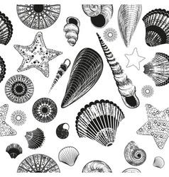 Seamless Seashell Sketch Pattern vector image