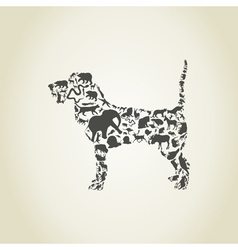 Dog an animal vector image