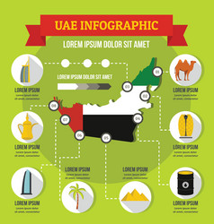 uae infographic concept flat style vector image