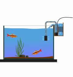 Aquarium equipment vector