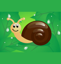 little snail on leaves vector image