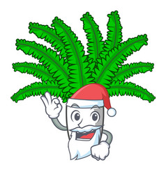 Santa fresh fern branch isolated on mascot vector