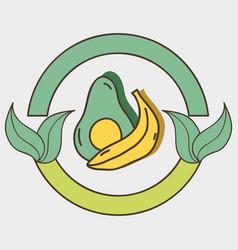 Fresh avocado and banana organ fruits with leaves vector