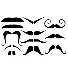 set of different mustaches vector image vector image