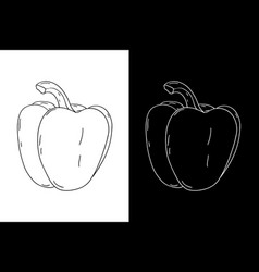 bell pepper hand drawn sketch vector image