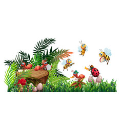 insect music band playing in nature vector image