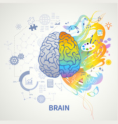 left right brain concept vector image