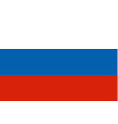 russia flag in circle shape in national colors vector image
