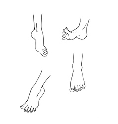 Set of 4 different feet in various poses vector