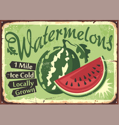 watermelons farm retro sign vector image