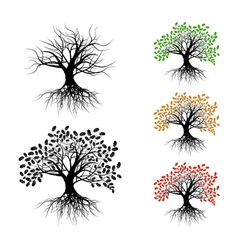 Lonely oak vector image