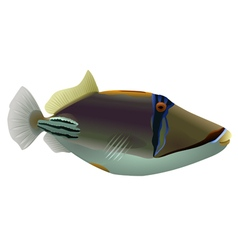 Picasso fish isolated vector image vector image