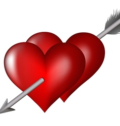 heart arrow vector image vector image