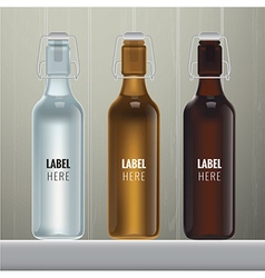 blank glass bottles vector image