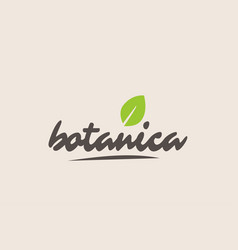 Botanica word or text with green leaf handwritten vector