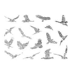 Collection of birds eps 8 vector