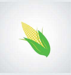 Corn on the cob vector