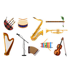 Different types musical instrument on isolated vector