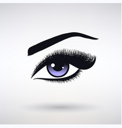 female eye with long eyelashes vector image