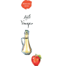 vinegar vector image