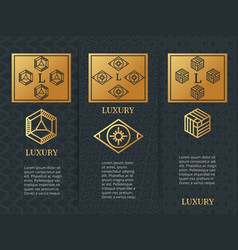 luxury design brochure flyers template with vector image vector image