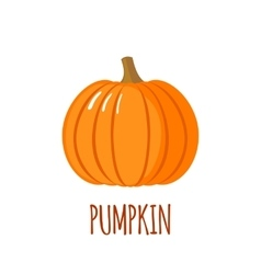 Pumpkin icon in flat style on white background vector image
