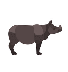 Adorable rhino or rhinoceros isolated on white vector