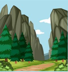 Beautiful wood canyon scene vector