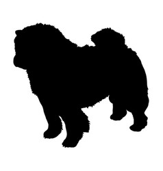 chow chow dog silhouette vector image