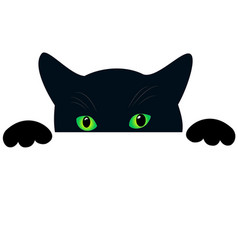 Cute black cat face with green eyes peekings vector