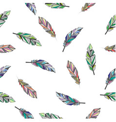 feathers color background vector image