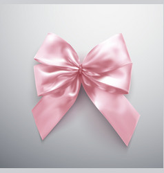 pink bow and ribbons vector image