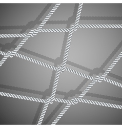 Stylish background with rope vector image