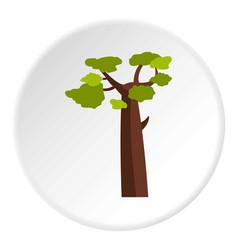 Baobab icon circle vector