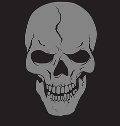 skull with layers vector image