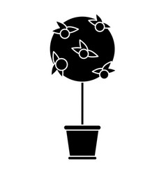 tree pot decorative garden pictogram vector image