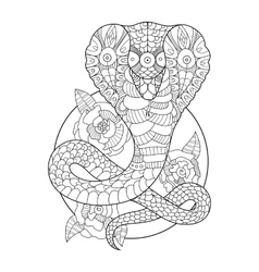 Cobra snake coloring book for adults vector image
