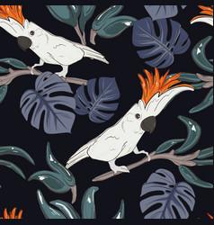 cockatoo parrot pattern wildlife bird cloth vector image